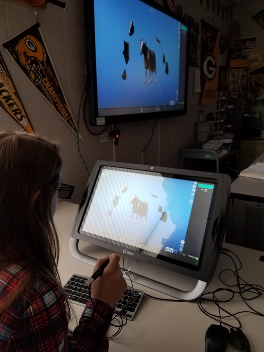 This student is dissecting a 3D cow.  She sees it in 3D and the class sees it in 2D.