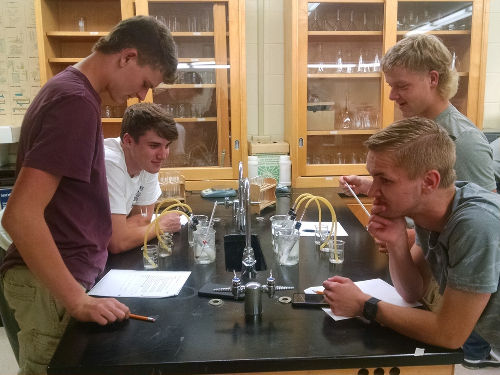 Environmental Science: Temperature vs Activity of Yeast Lab