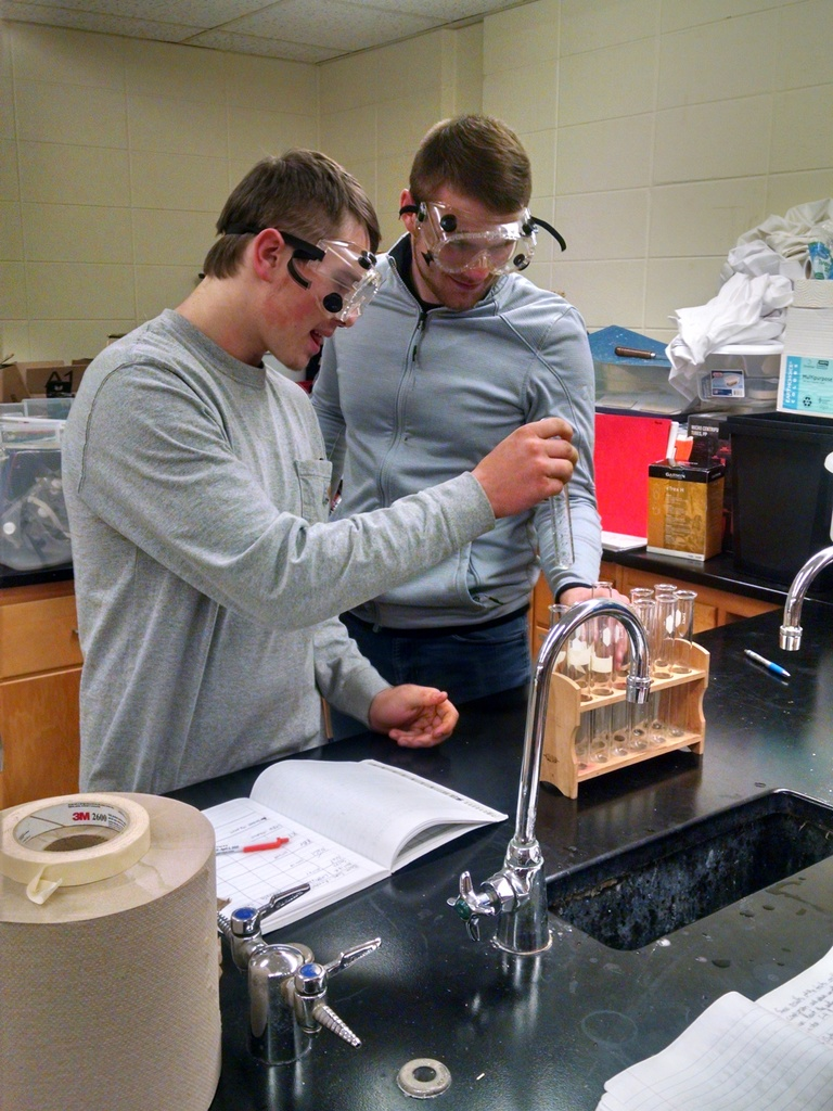 Chemistry class working on a lab.