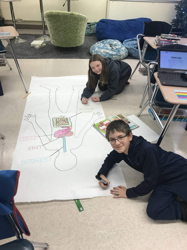 5th graders working on organ systems!