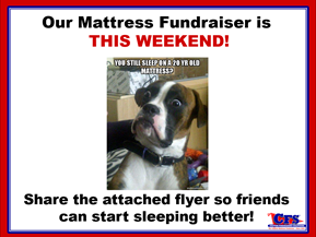 Mattress Dog wants YOU to show support!